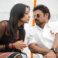 Venky and Trisha New Movie Launch Stilss | Picture 34015