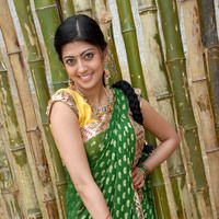 Pranitha New Pictures | Picture 46721