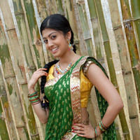 Pranitha New Pictures | Picture 46722