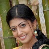 Pranitha New Pictures | Picture 46724