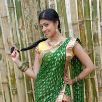 Pranitha New Pictures | Picture 46726
