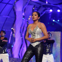 Priyamani hot pictures | Picture 46083