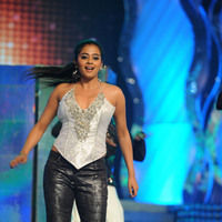 Priyamani hot pictures | Picture 46084