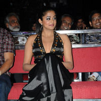 Priyamani hot pictures | Picture 46089